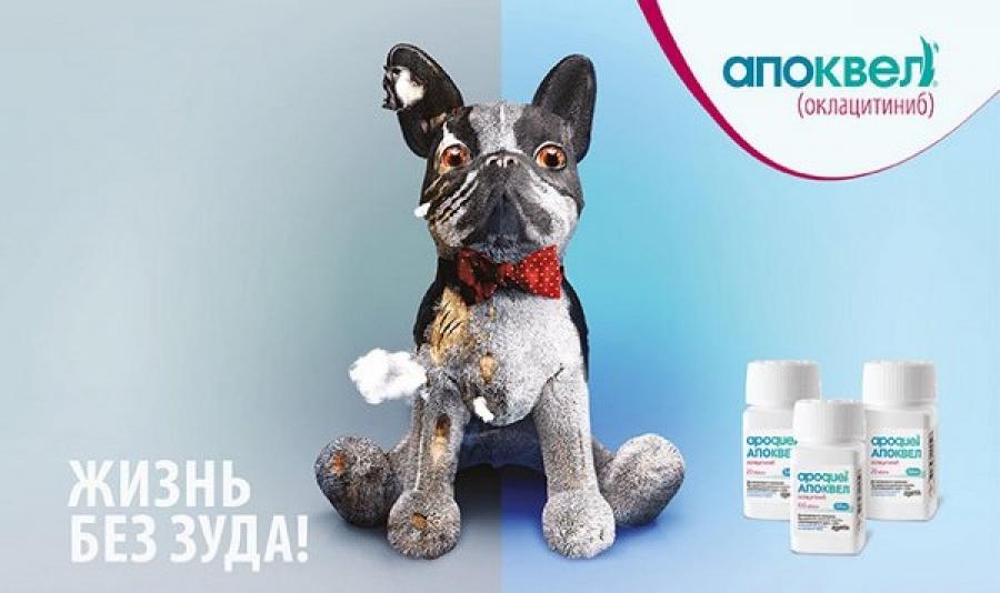 Апоквел для собак – инструкция, состав, дозировка для собак, как действует, противопоказания