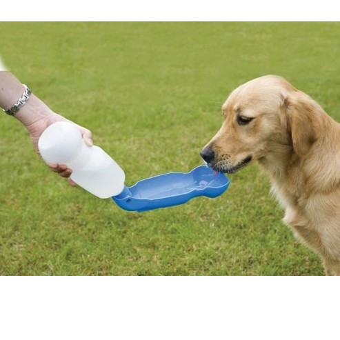 Лучшие переноски для собак на 2021 год