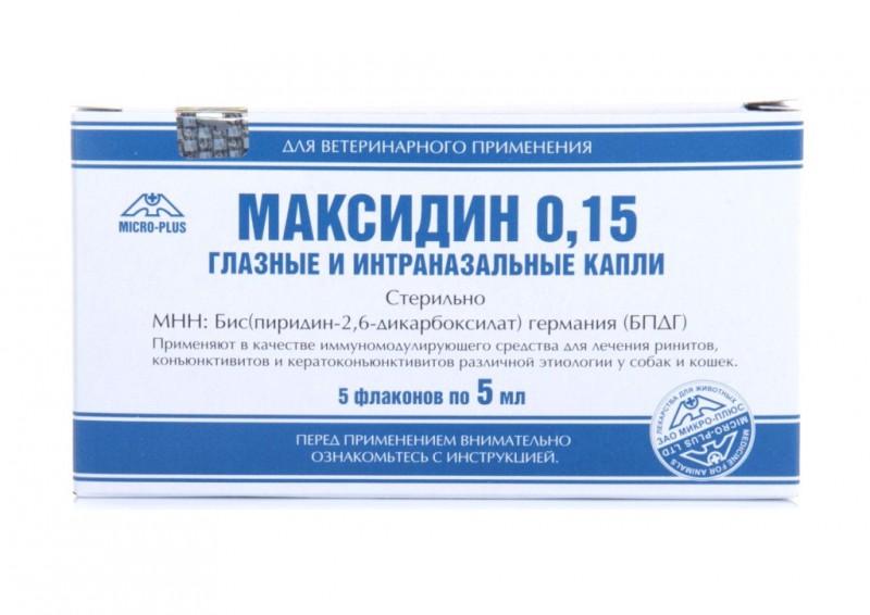 Максидин для собак и кошек: инструкция по применению - kotiko.ru
