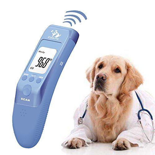 Можно ли измерить температуру собаке обычным, ртутным градусником в домашних условиях