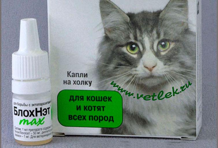 Как капать капли от блох кошке