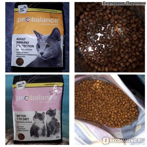 Корм пурина для кошек: страна производитель, разновидности, состав, преимущества