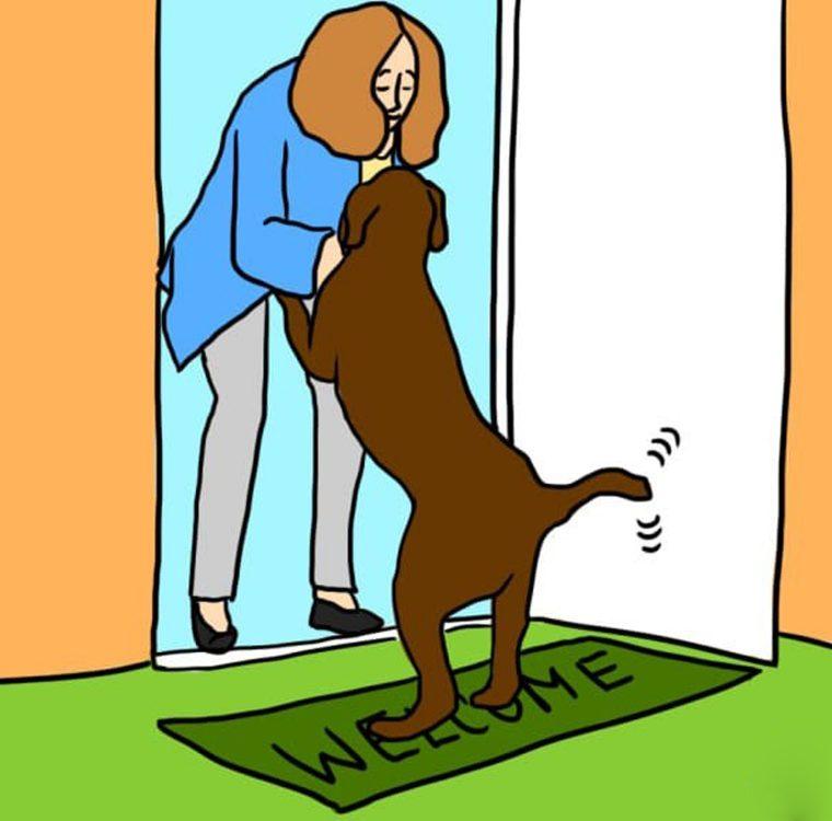 Почему собаки лижут хозяина и других людей?