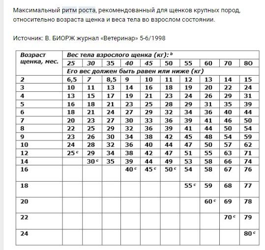 Вес и рост щенка и взрослой немецкой овчарки по месяцам