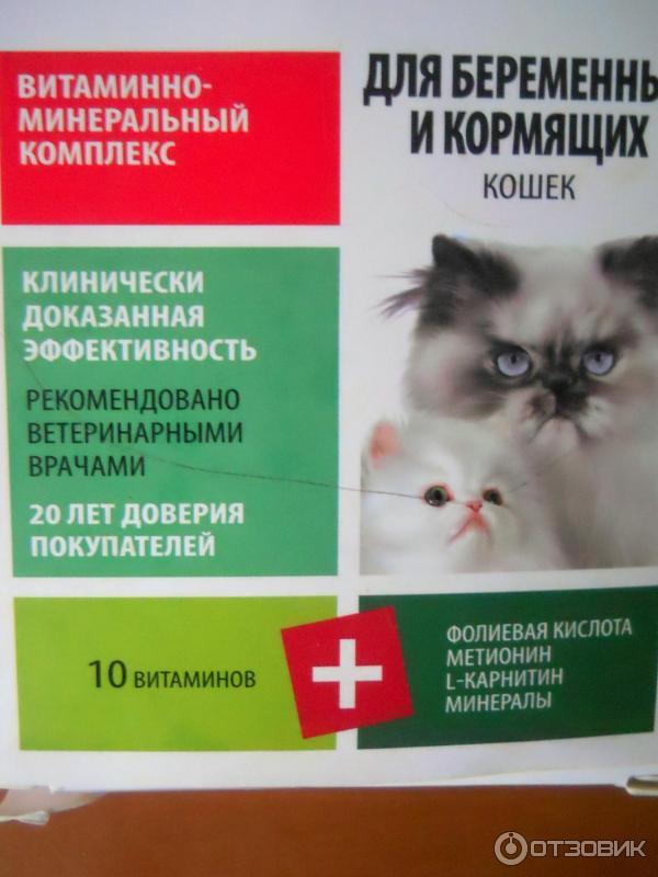 Как помочь организму при ротавирусной инфекции