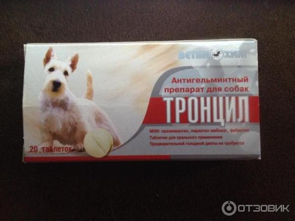 Тронцил для собак: инструкция по применению, эффективность и отзывы специалистов