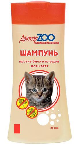 Какие ошейники от блох для котят лучше и с какого возраста их можно одевать. как действует противоблошиный ошейник для кошек