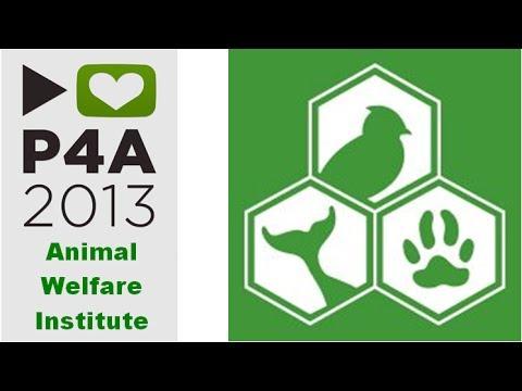 International fund for animal welfare (ifaw)   veggie people