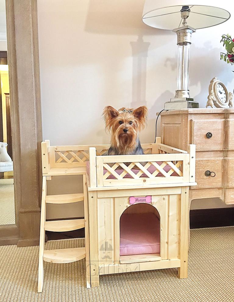 Какую собаку лучше завести в квартире