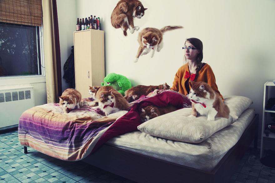 Зачем кошки закрывают морду лапкой во время сна? - gafki.ru