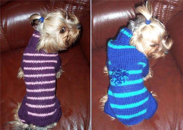 Вяжем на спицах одежду для собак (1) —