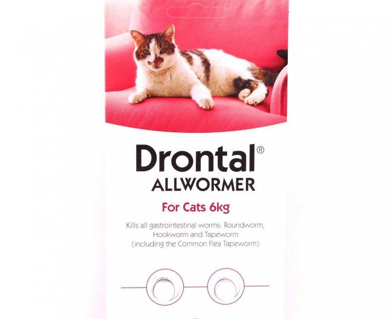 Дронтал для кошек: 115 фото, инструкция по применению, дозировка и эффективность лекарства