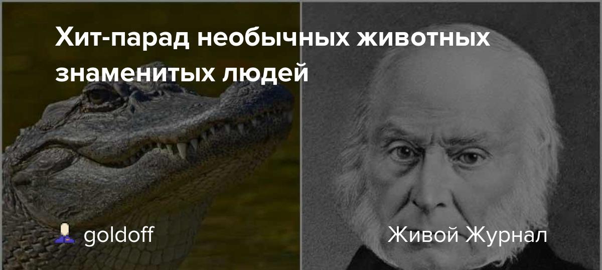 Мемы популярные. самые известные мемы в истории интернета (40 фото). красная кнопка и леонид агутин