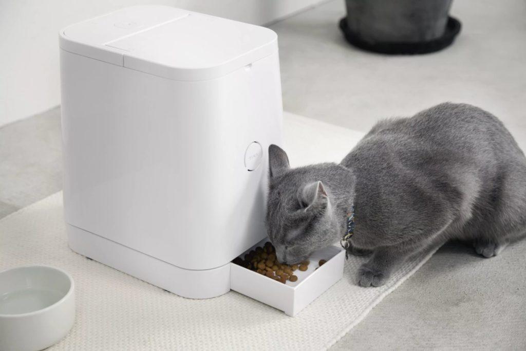 Автоматическая кормушка для кошек - сравнение 11 лучших автокормушек: виды, особенности, как работает