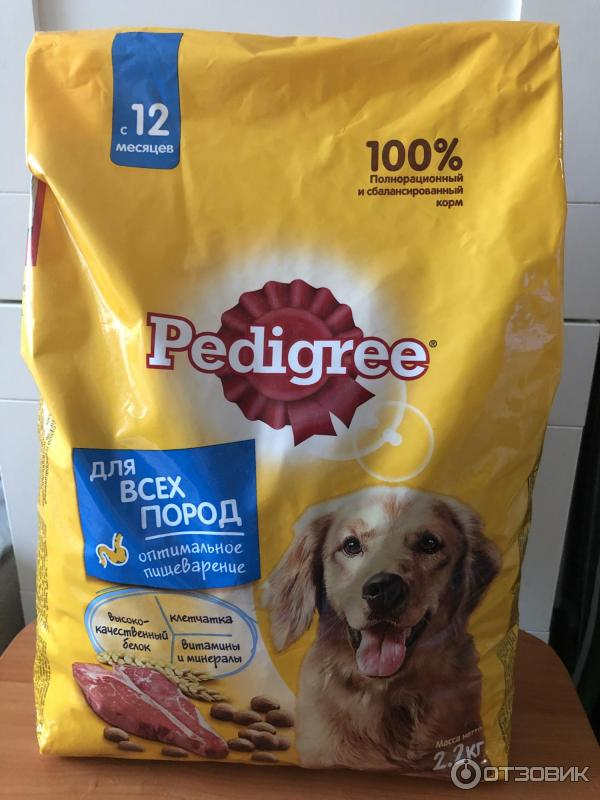 Педигри корм для собак: отзывы ветеринаров, разбор состава, описание и классы корма (100 фото + видео)
