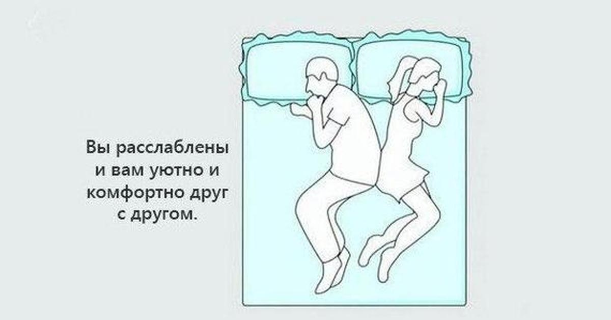 Кошка спит с хозяином на его постели: можно или нельзя