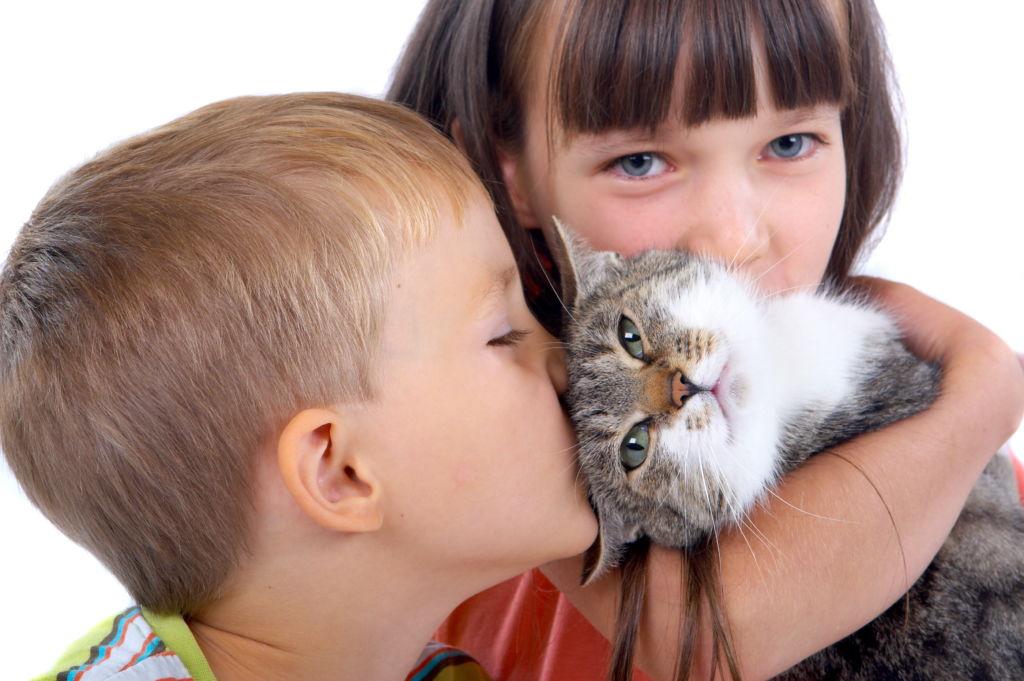 Самые добрые собаки, которые любят детей: обзор самых лучших пород