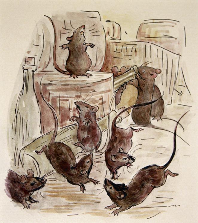 Как определить кота-крысолова, какие породы кошек ловят грызунов