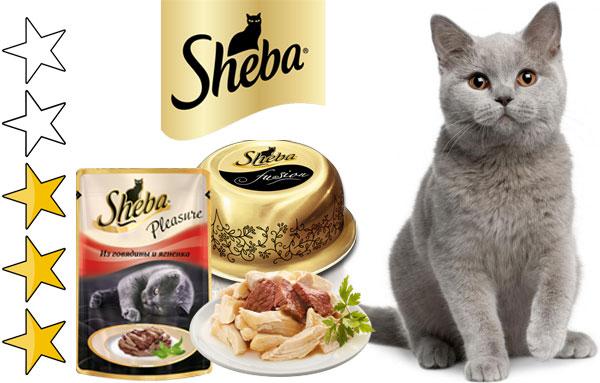 Корм для кошек «шеба»: отзывы. sheba — консервы для кошек. советы ветеринаров
