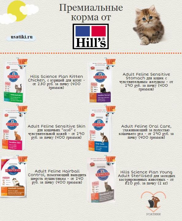 Готовые сухие корма для кошек: особенности и разновидности