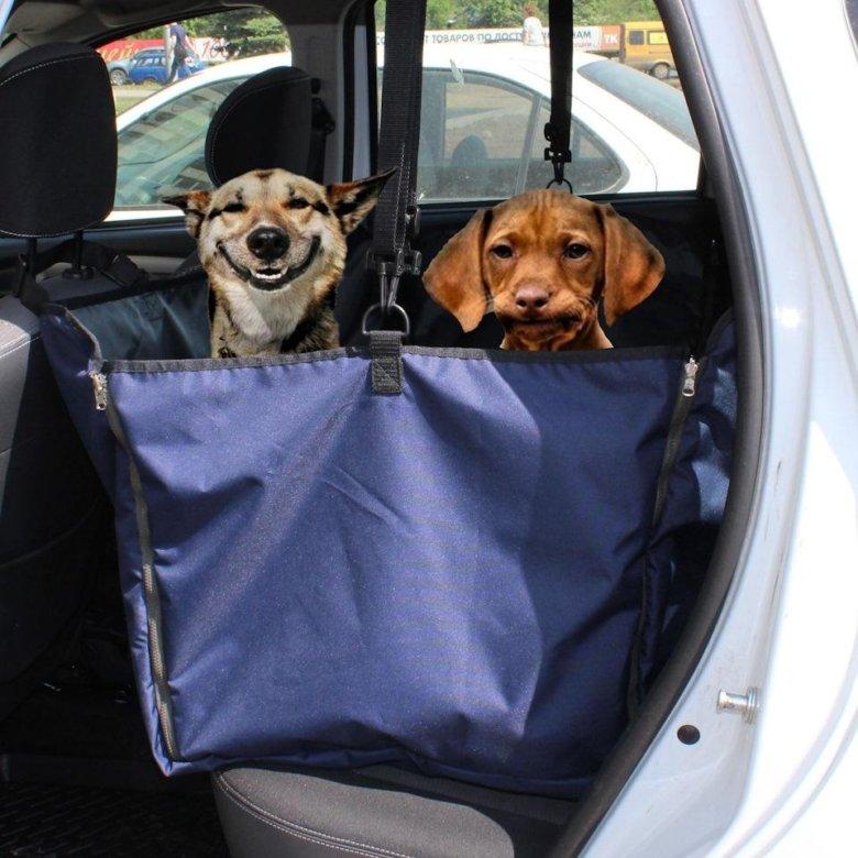 Гамак для собаки в машину своими руками: 400 фото и выкроек + мастер-классы