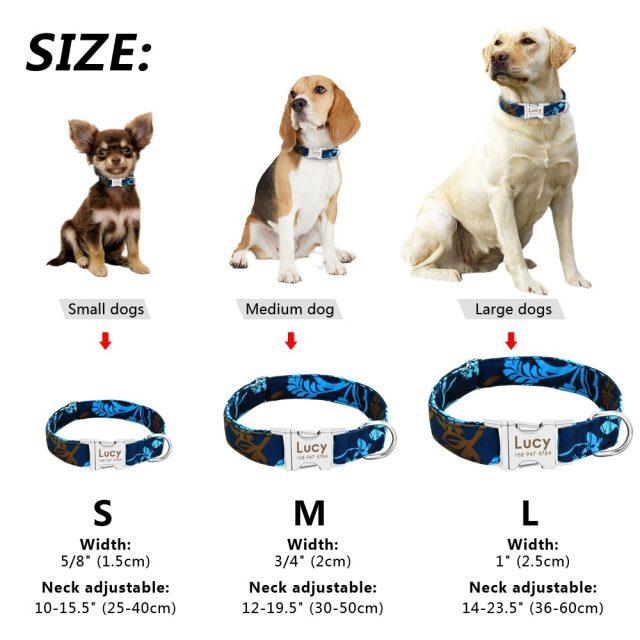 Клички для собак-девочек разных пород
