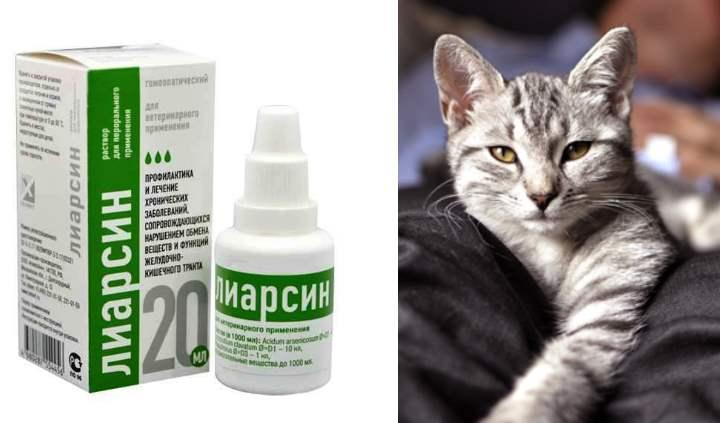 Лиарсин для кошек – инструкция к применению, дозировка