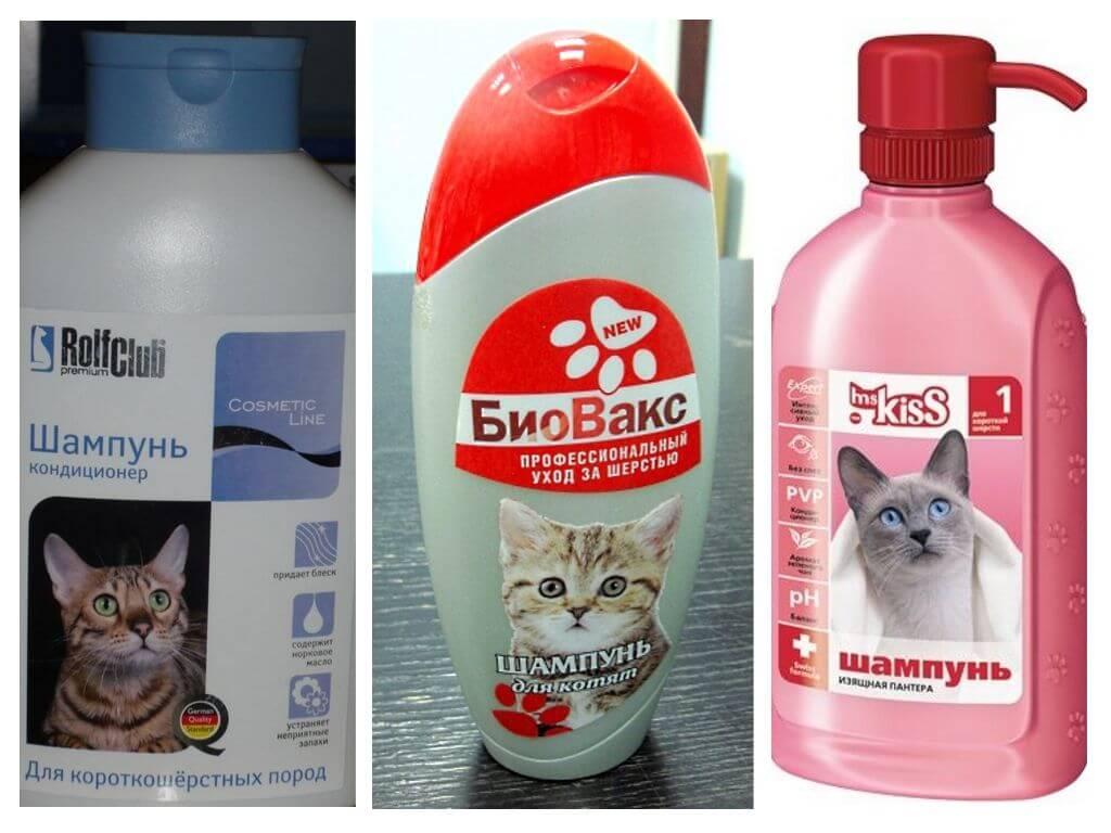 Топ 15 лучших шампуней для кошек и котов