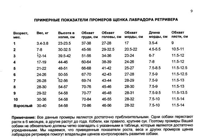 Вес немецкой овчарки