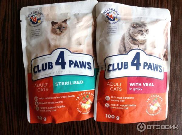 Корма для кошек — рейтинг по качеству, по мнению ветеринаров 2021 года