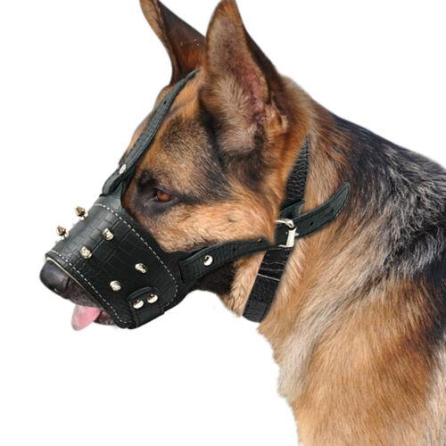 Перечень пород собак, которые должны носить намордник по закону