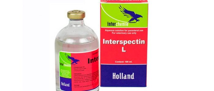 Интерспектин-l: инструкция по применению