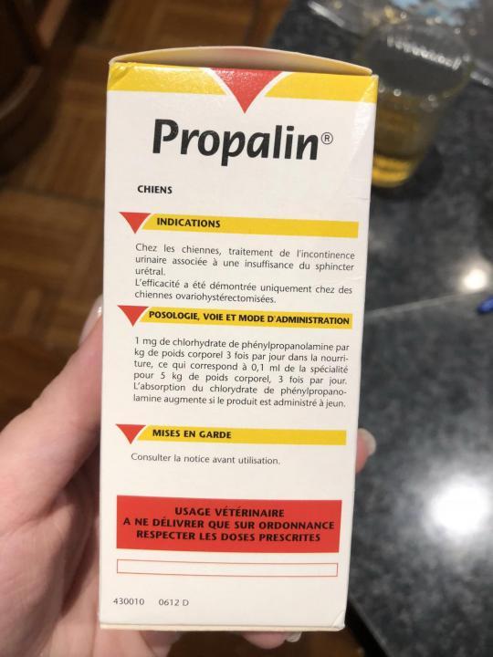 Пропалин для собак ? аналоги, инструкция, цена, отзывы | petguru