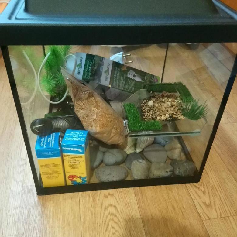 ᐉ фильтр в аквариум с красноухой черепахой: выбор, установка и использование - zoopalitra-spb.ru