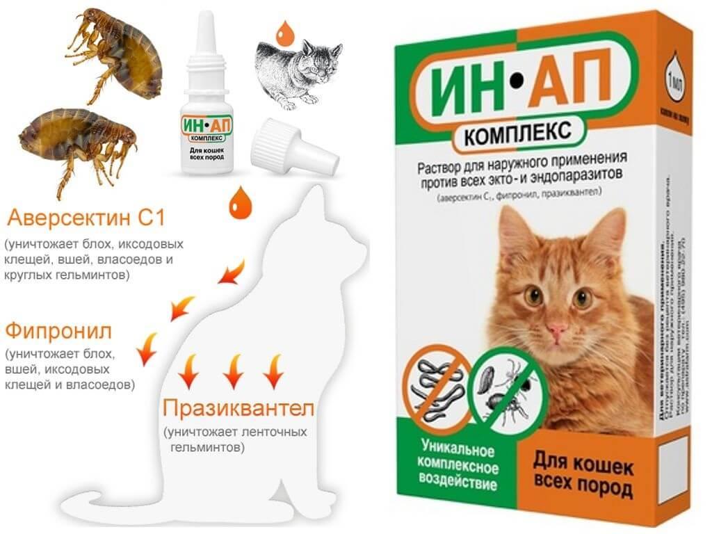 Капли от блох и клещей на холку кошкам