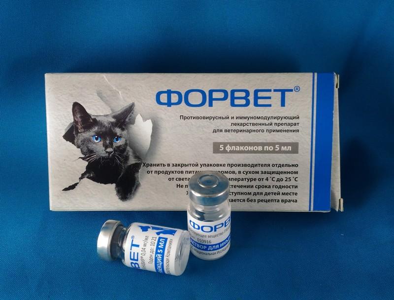 Успокоительное для кошек – обзор препаратов