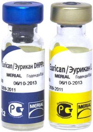 Эурикан для собак: инструкция по применению вакцины от бешенства, схема вакцинации и дозировка, противопоказания - kotiko.ru