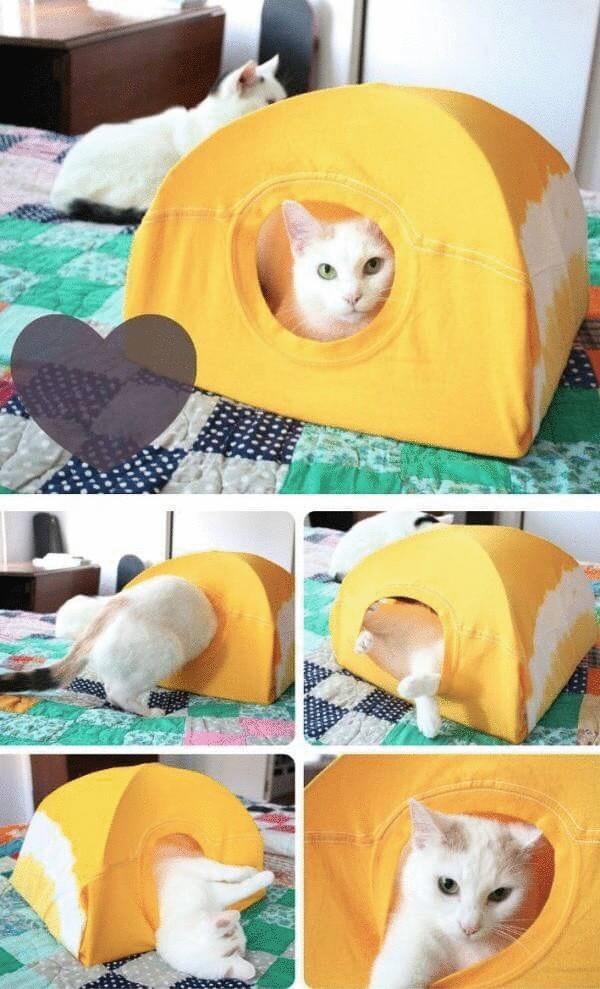 10 гениальных лайфхаков для тех, у кого дома живет кошка