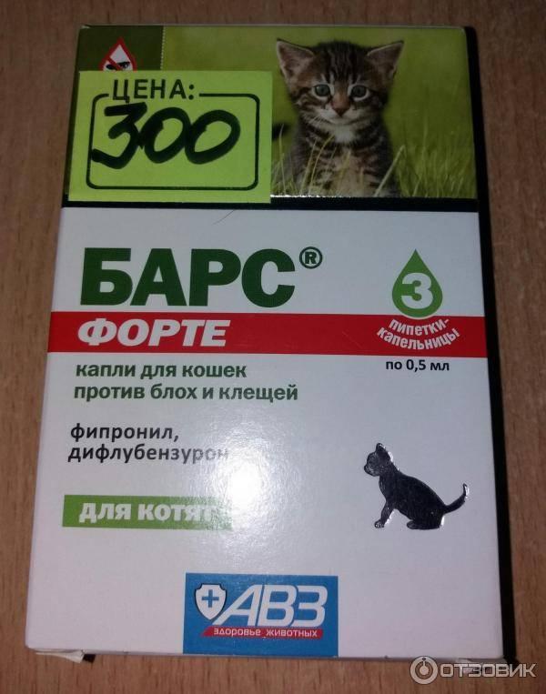 Капли от блох для кошек: особенности препаратов и лучшие производители
