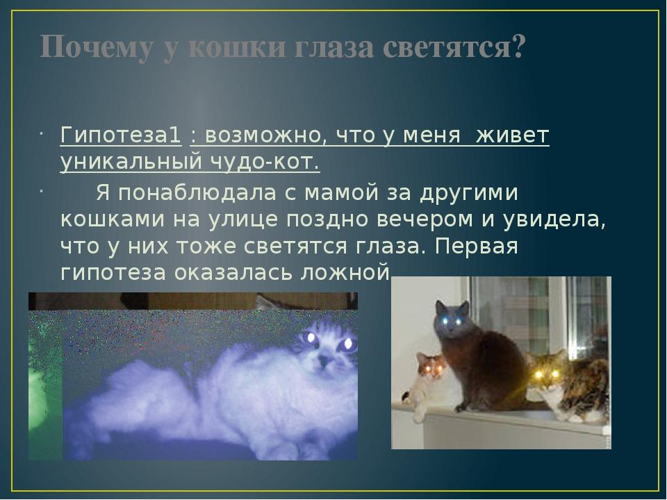 Идиопатический цистит у котов (ицк) - причины, симптомы, лечение | ветклиника зоостатус