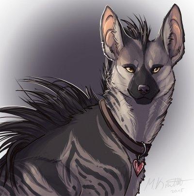 Земляной волк: самый мелкий и самый странный вид гиен