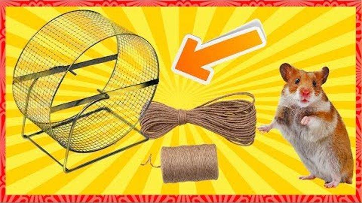 Как сделать колесо для хомяка в домашних условиях
