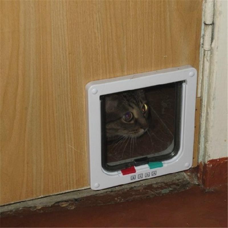 Дверь для кошки: обзор лучших моделей с советами, как выбрать и сделать дверь своими руками
