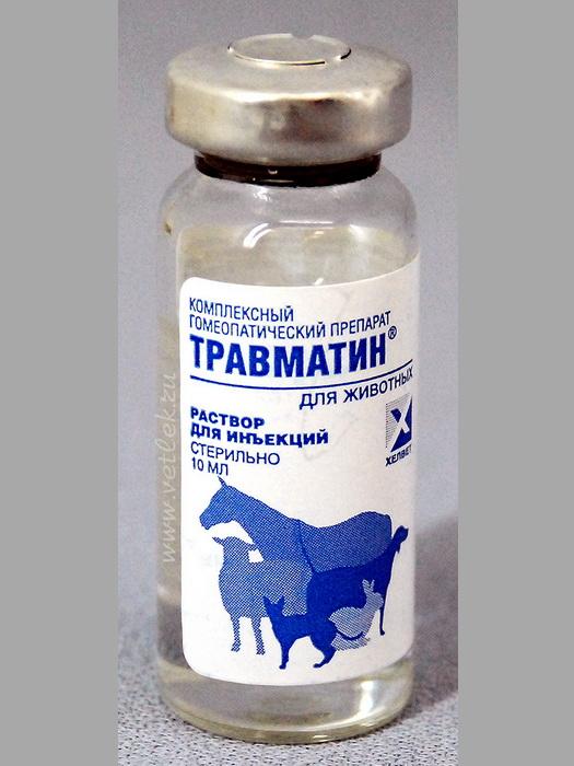 Травматин для кошек – всё самое важное о препарате