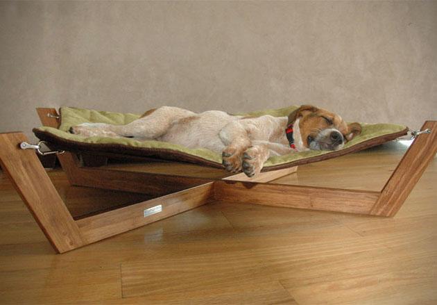 Как отучить собаку спать на кровати с хозяином простые способы