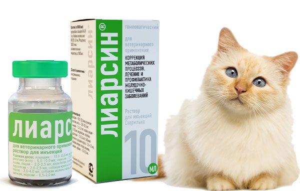 Лиарсин для кошек: инструкция по применению, другая полезная информация