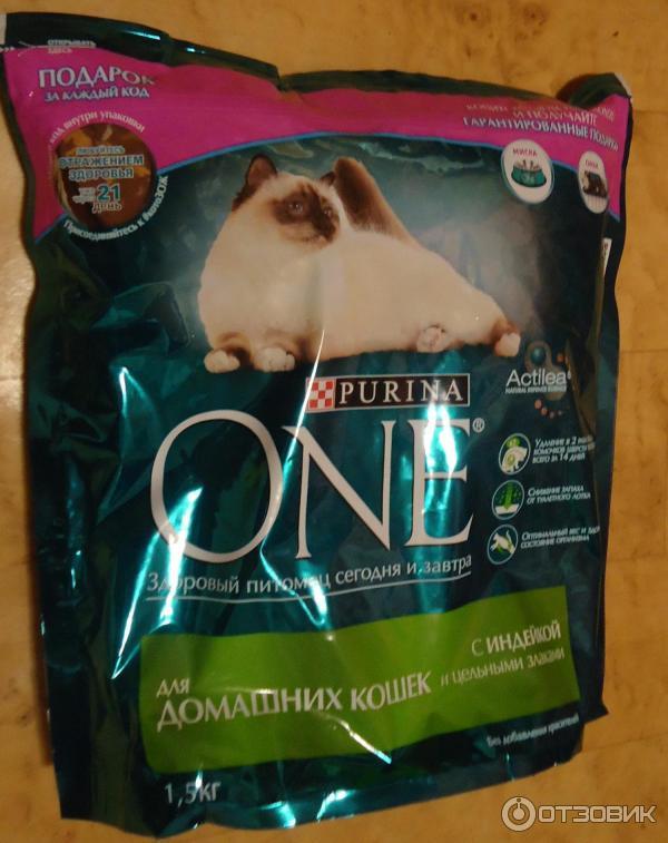 Пурина для кошек: обзор кормов и отзывы ветеринаров