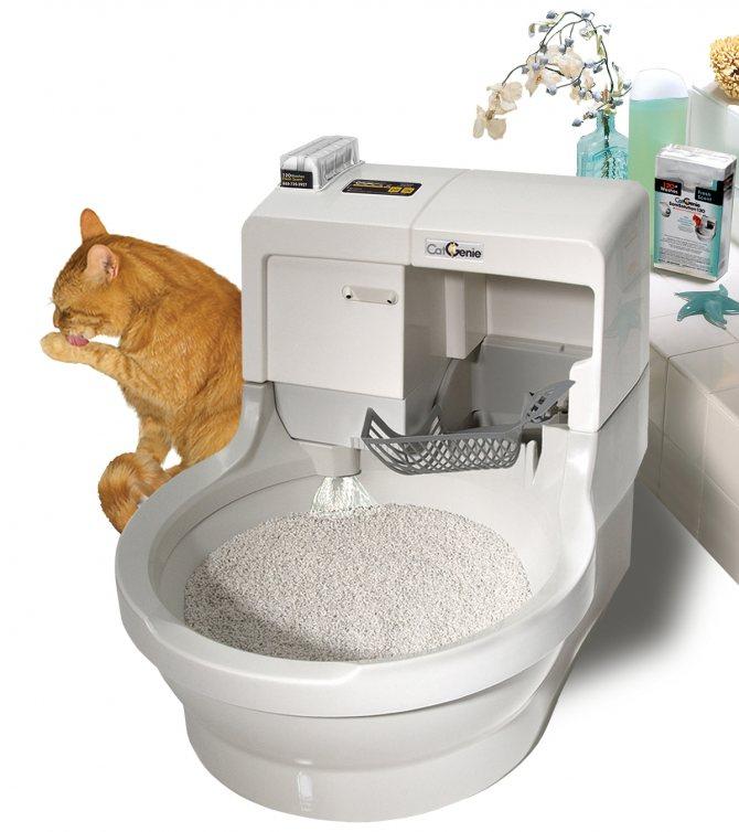 Туалет для кошек: закрытый угловой лоток