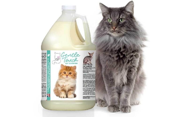20 лучших шампуней для кошек