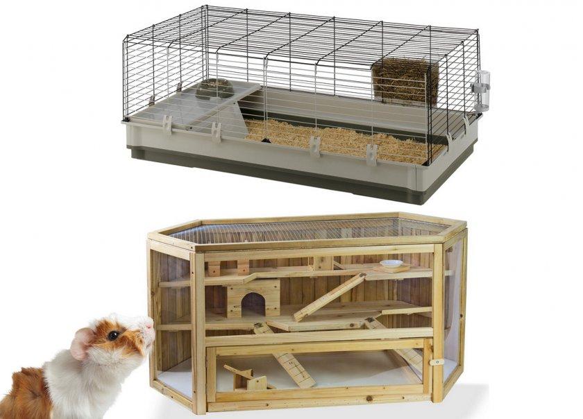 Клетка для морской свинки (33 фото): размеры больших двухэтажных клеток. что должно быть внутри? как правильно обустроить домик? какой нужен наполнитель и подстилка?